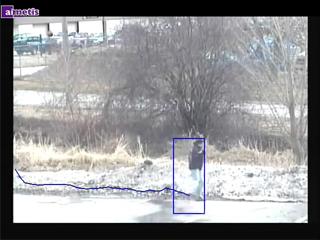 Der Aimetis Outdoor Object Tracker arbeitet auch bei komplexen Hintergrundbewegung zuverlässig